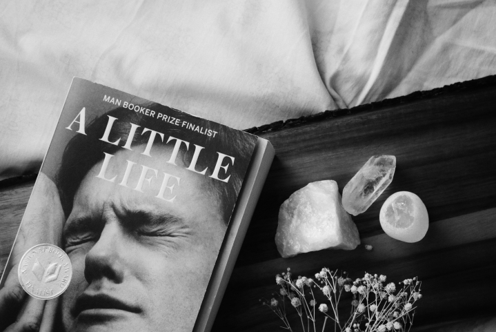 A Little Life ✻ Book Review