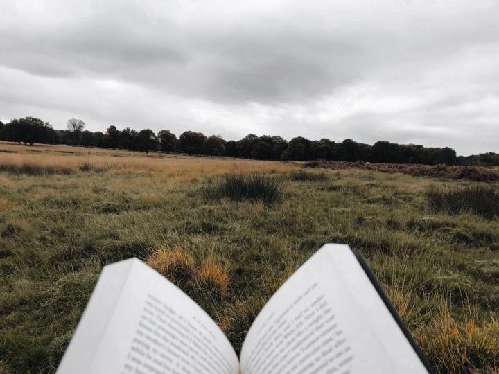 Literature: A Journey