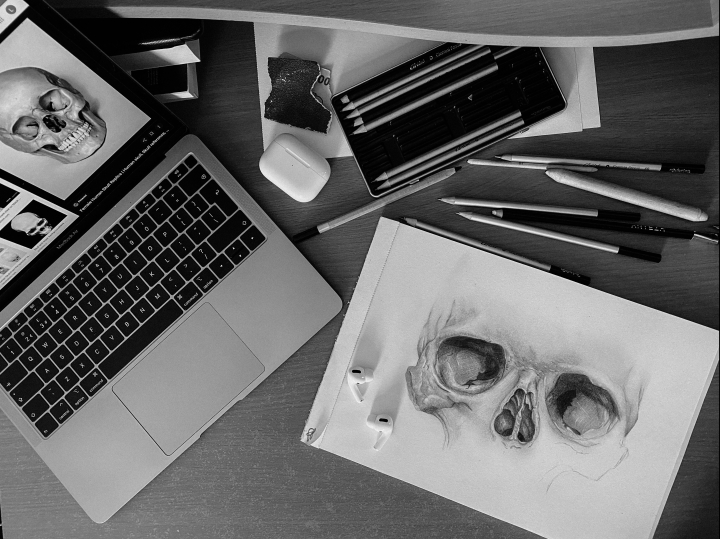 I. Anatomy: Skull Drawing